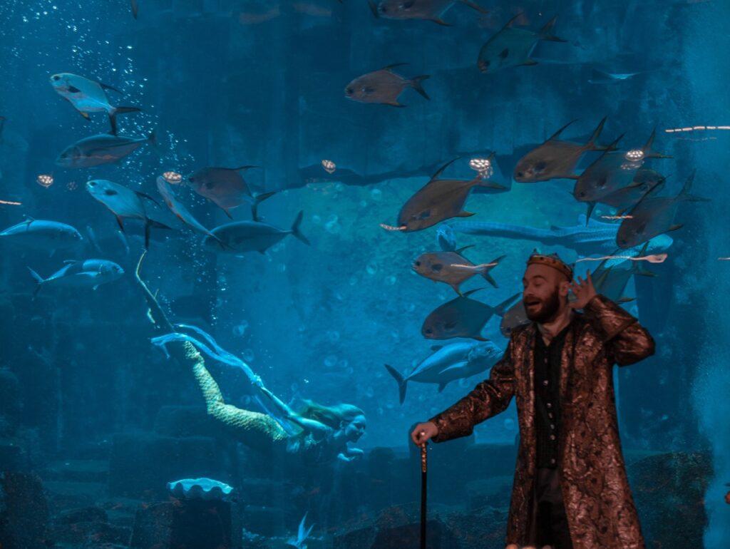 akwarium w paryzu przedstawienie plywajaca syrena