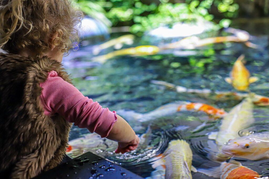 paryz z dzieckiem akwarium w paryzu