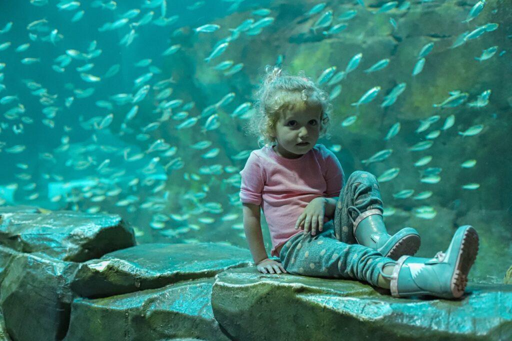 paryz z dzieckiem zwiedzanie akwarium w paryzu