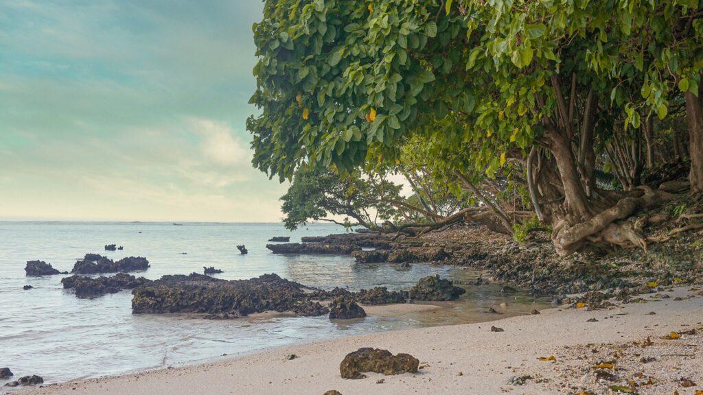 Koszt bezludnej wyspy w Polinezji Francuskiej