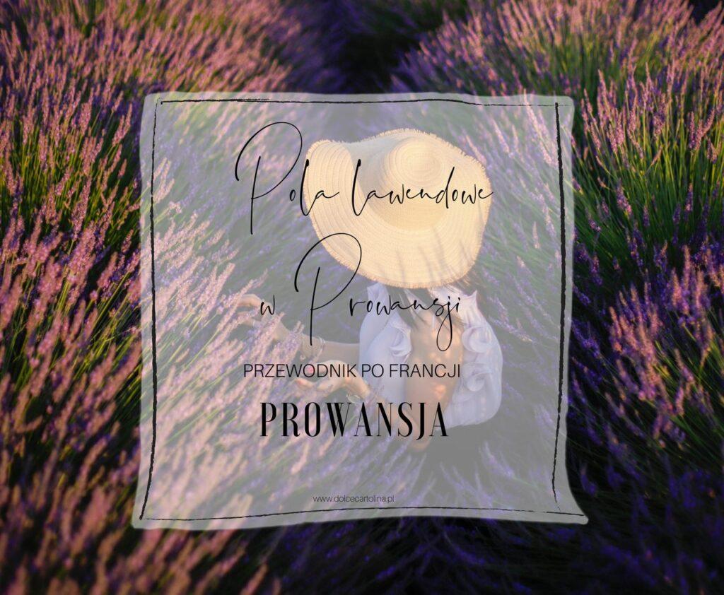 lawendowe pola w Prowansji