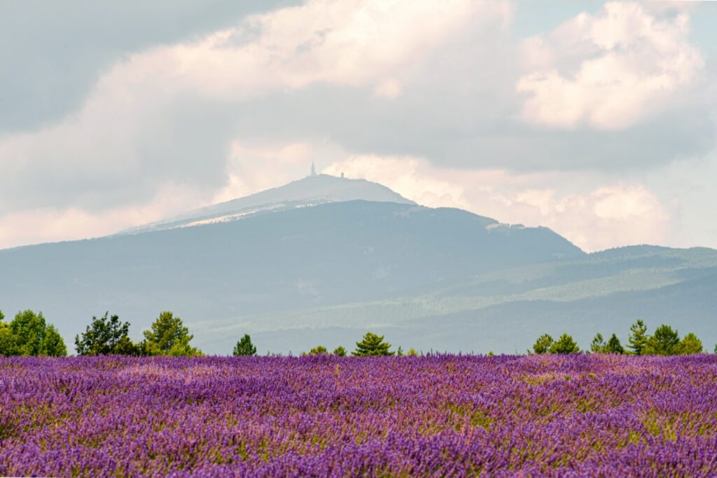 Widok na górę Mont Ventoux