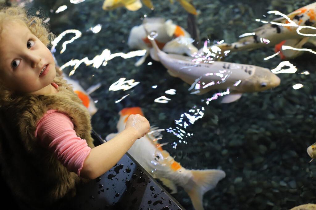 Zwiedzanie akwarium w Paryżu