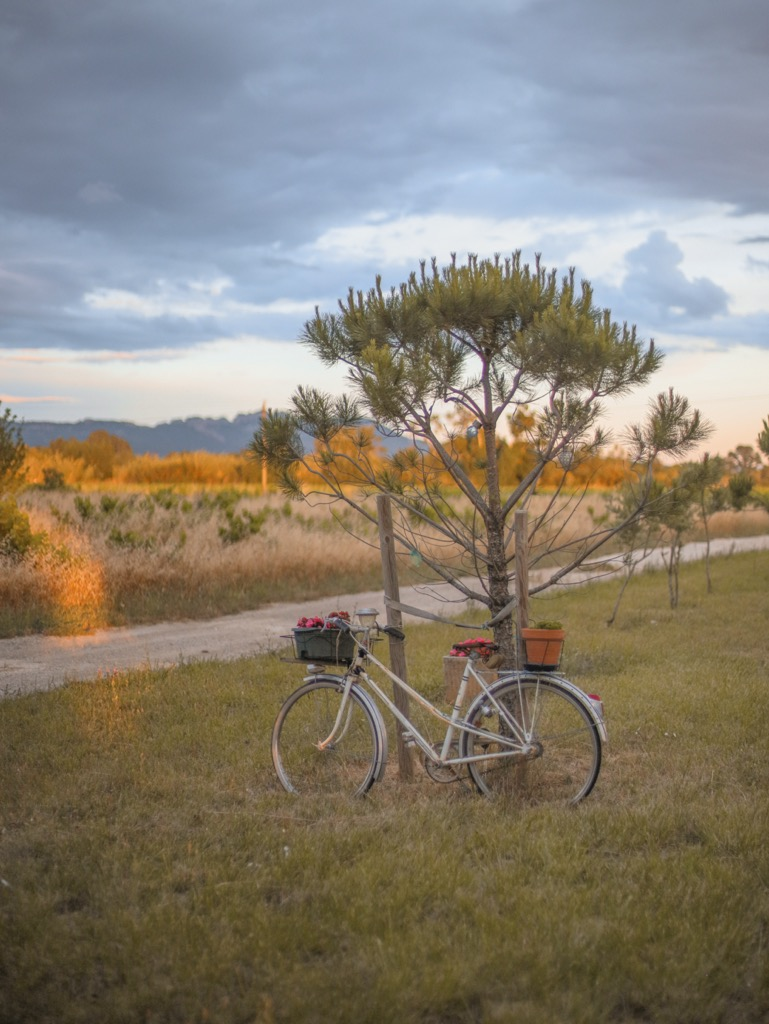 Prowansalskie klimaty. Zach贸d s艂o艅ca w Prowansji. Stary rower.