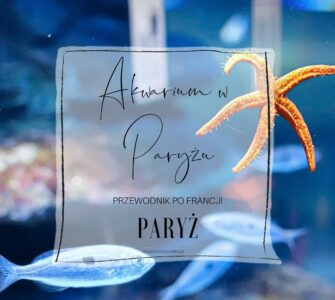 Zwiedzanie Oceanarium w Paryżu. Zwiedzanie Paryża z dzieckiem.