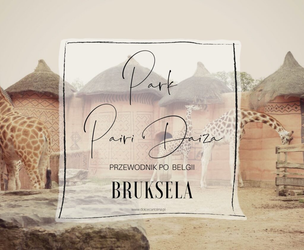 Pairi Daiza w Belgii. Najlepsze zoo w Europie.