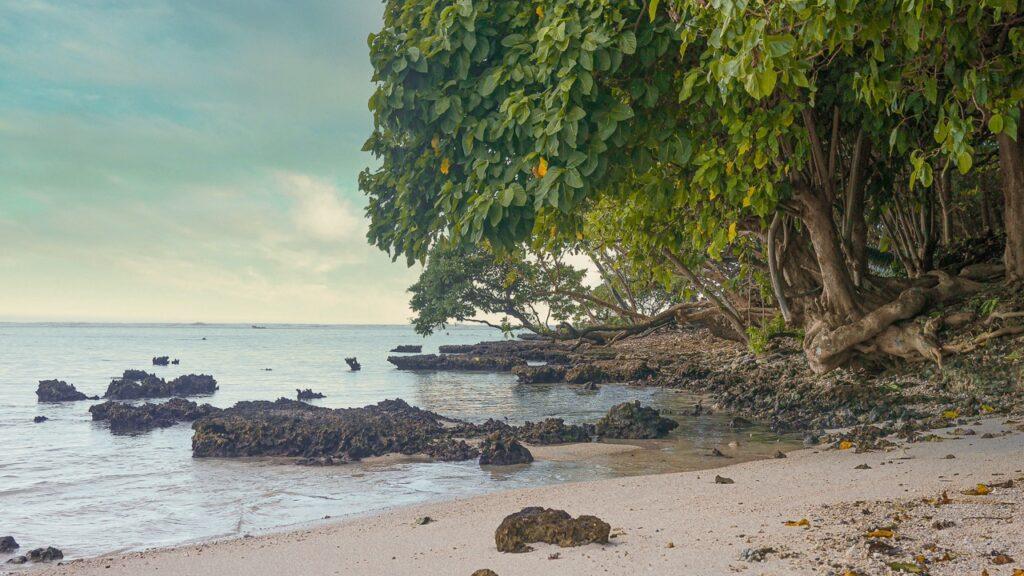 Plaża na wyspie Raiatea