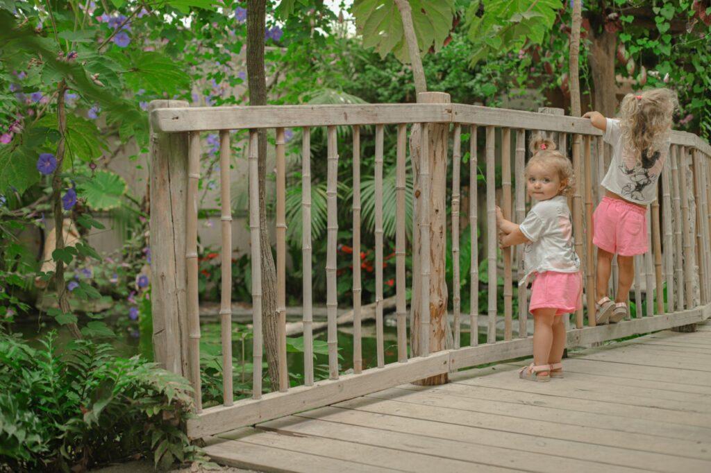 Atrakcje dla dzieci w Prowansji. Farma Motyli w Prowansji.